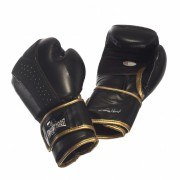 Ernesto Hoost Ultimate Boxing Gloves